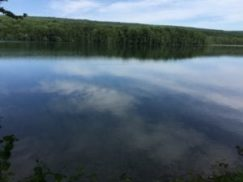 A view across Canadice Lake with trees in distance... the perfect outdoor adventure during Covid-19