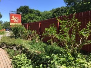 garden next to fence
