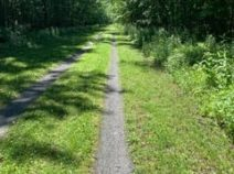 Safe outdoor cycling trail with lush trees along the Lehigh Valley Trail