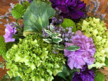 flowers of green and purple