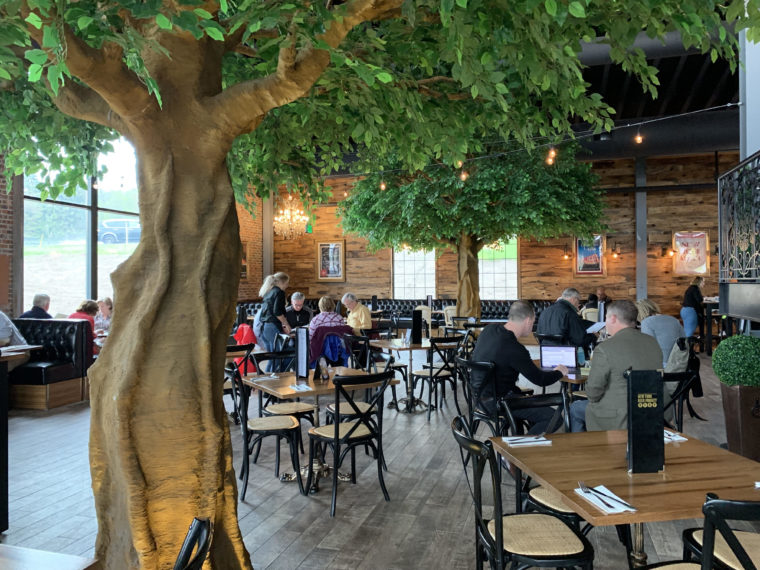 people dining indoors in room decorated with trees